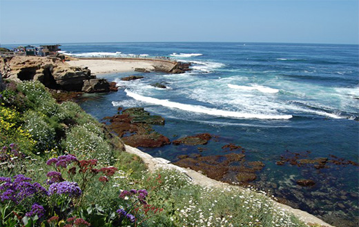 Landscape of the beach in La Jolla.